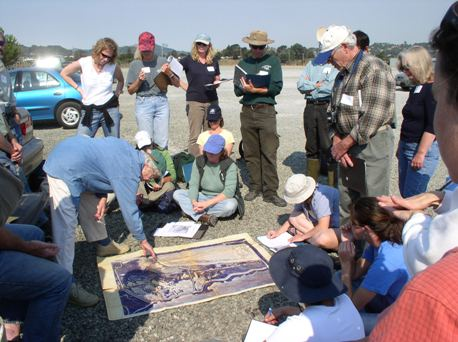 Tidal Wetland Restoration Field Trip:  Muzzi Marsh with Phyllis Faber program image